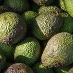 Avocado shortage will affect the USA