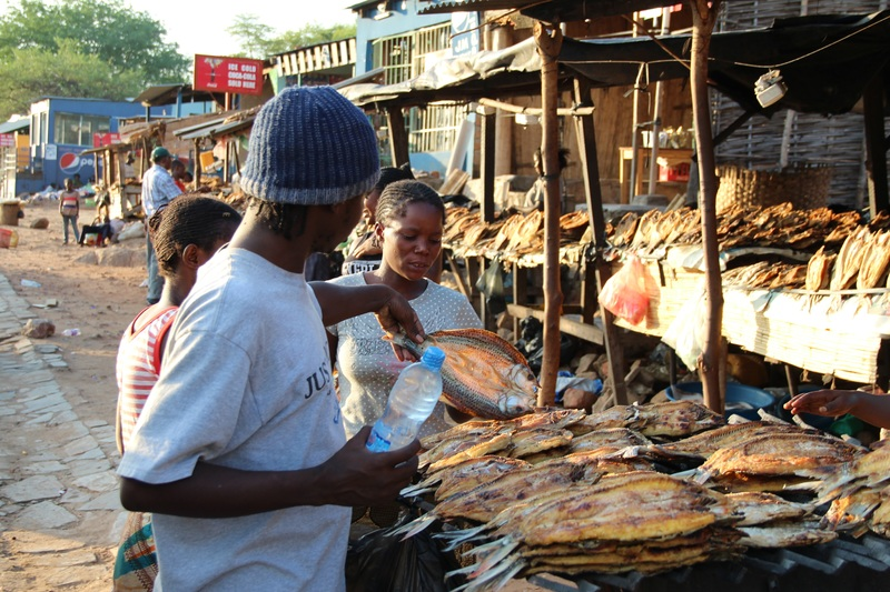 Botswana food market