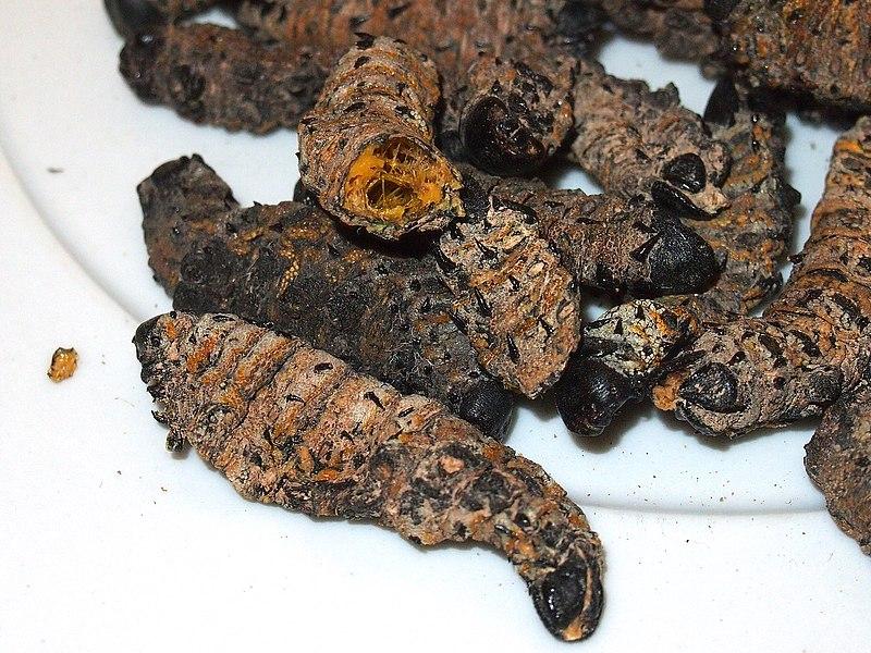 9 Botswanan Foods Everyone Must Try! 2