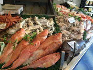 Fish market Panama